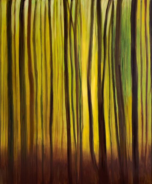"Bild "" Wald 11"""