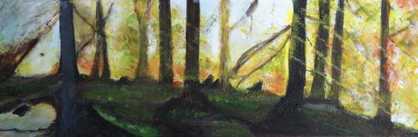 "Bild ""Wald 9"""