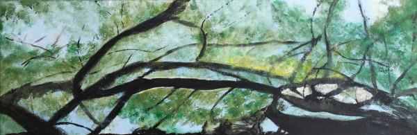 "Bild ""Wald 8"""
